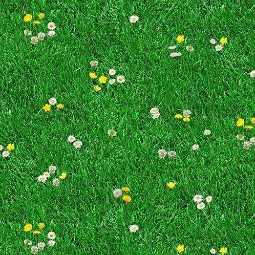 Hierba Con Florecillas