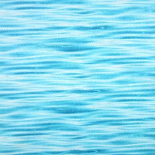 Agua de Lago