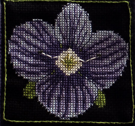 Speedwell Flower Small Purse