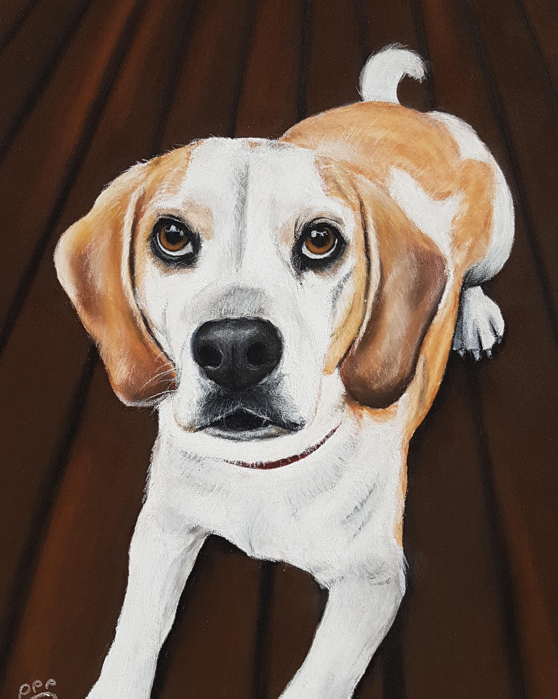 Barney A4 Beagle