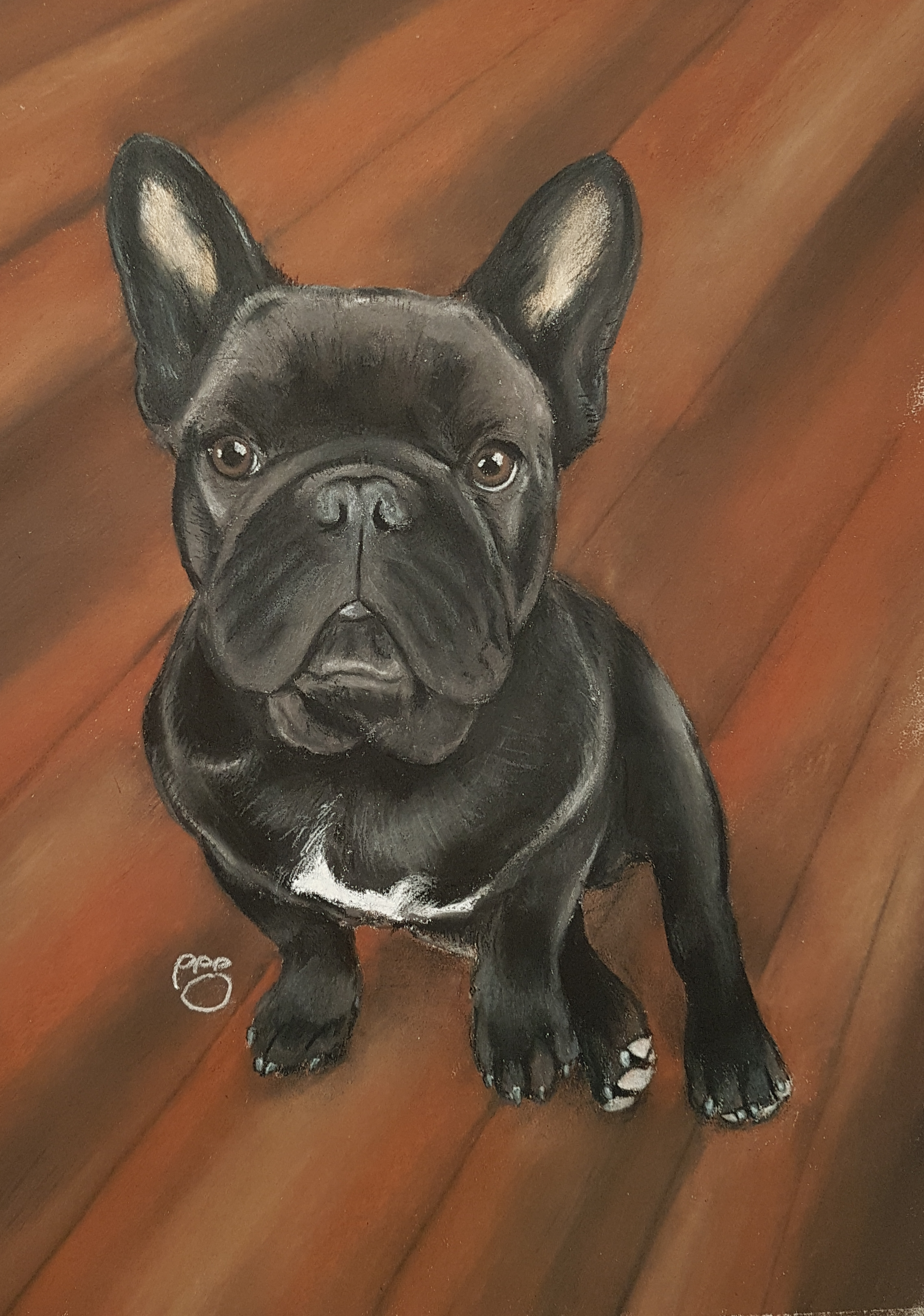 Ruby A4 French Bulldog