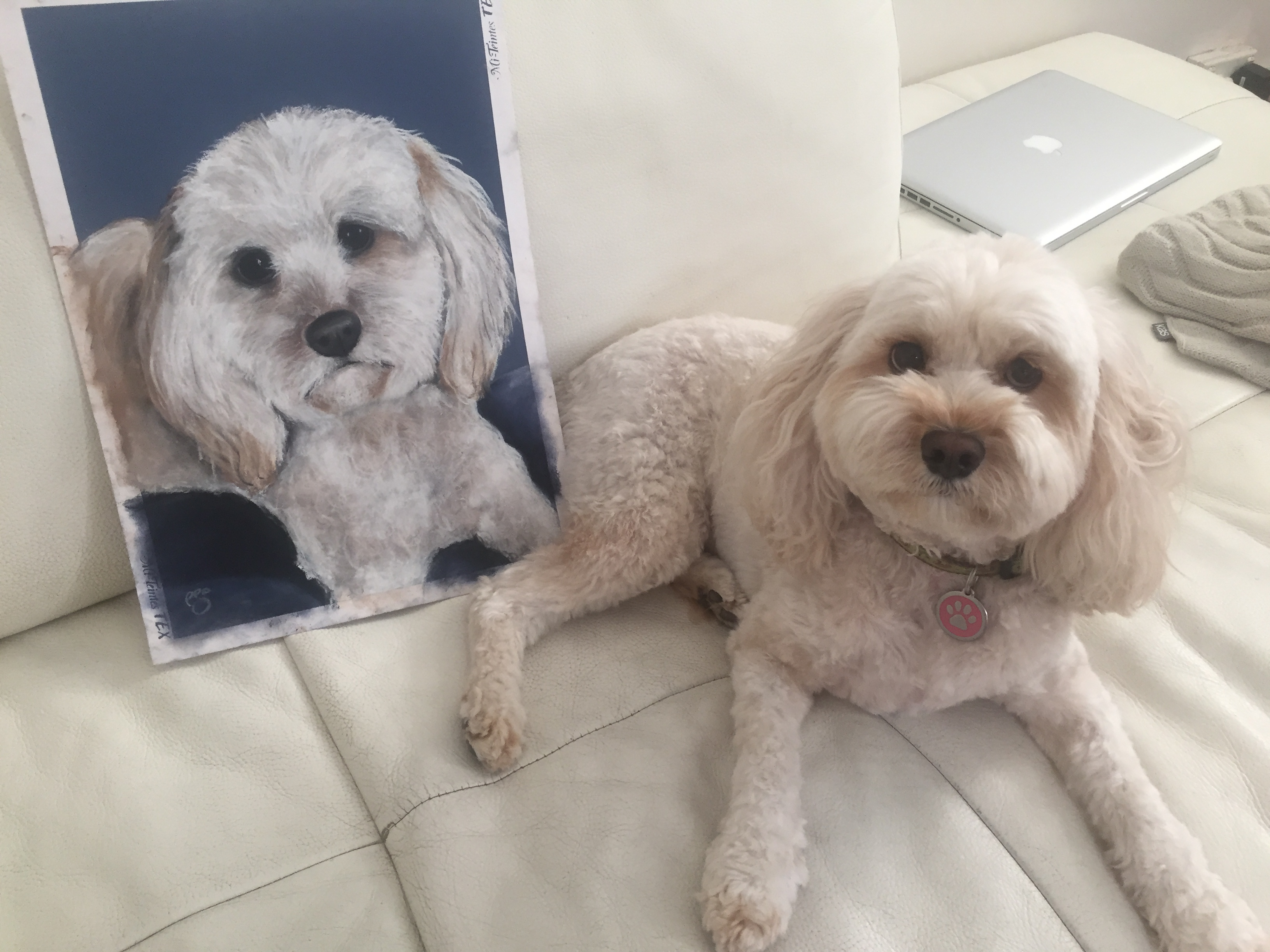 Flossy with portrait