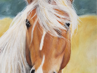 So the horse is finished