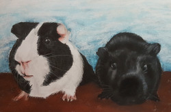 Patches and Archie A3