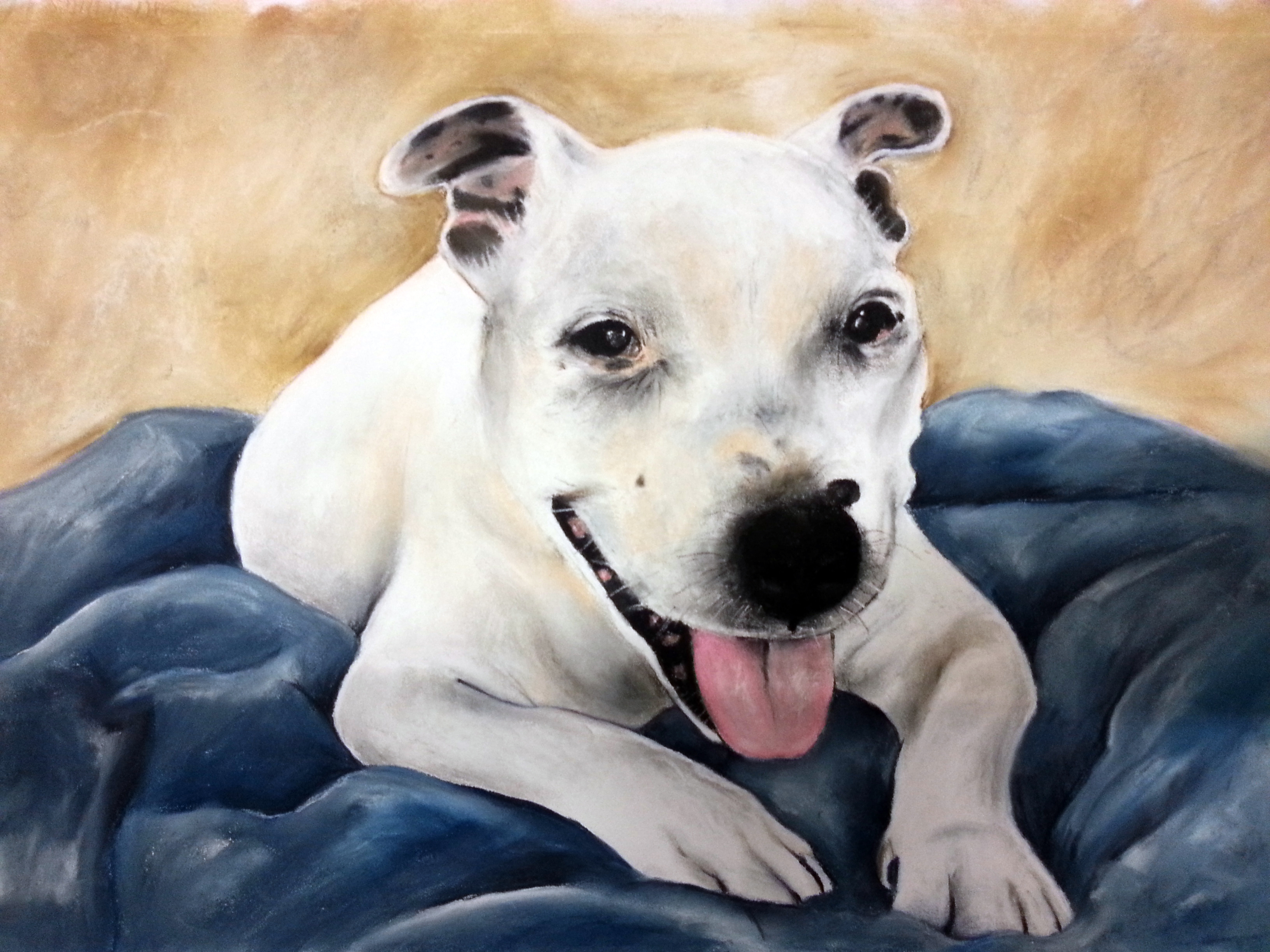 Scrappy A3 Staffy