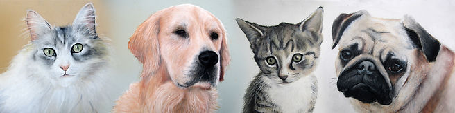 Pet Portraits - Great gifts for Animal Lovers
