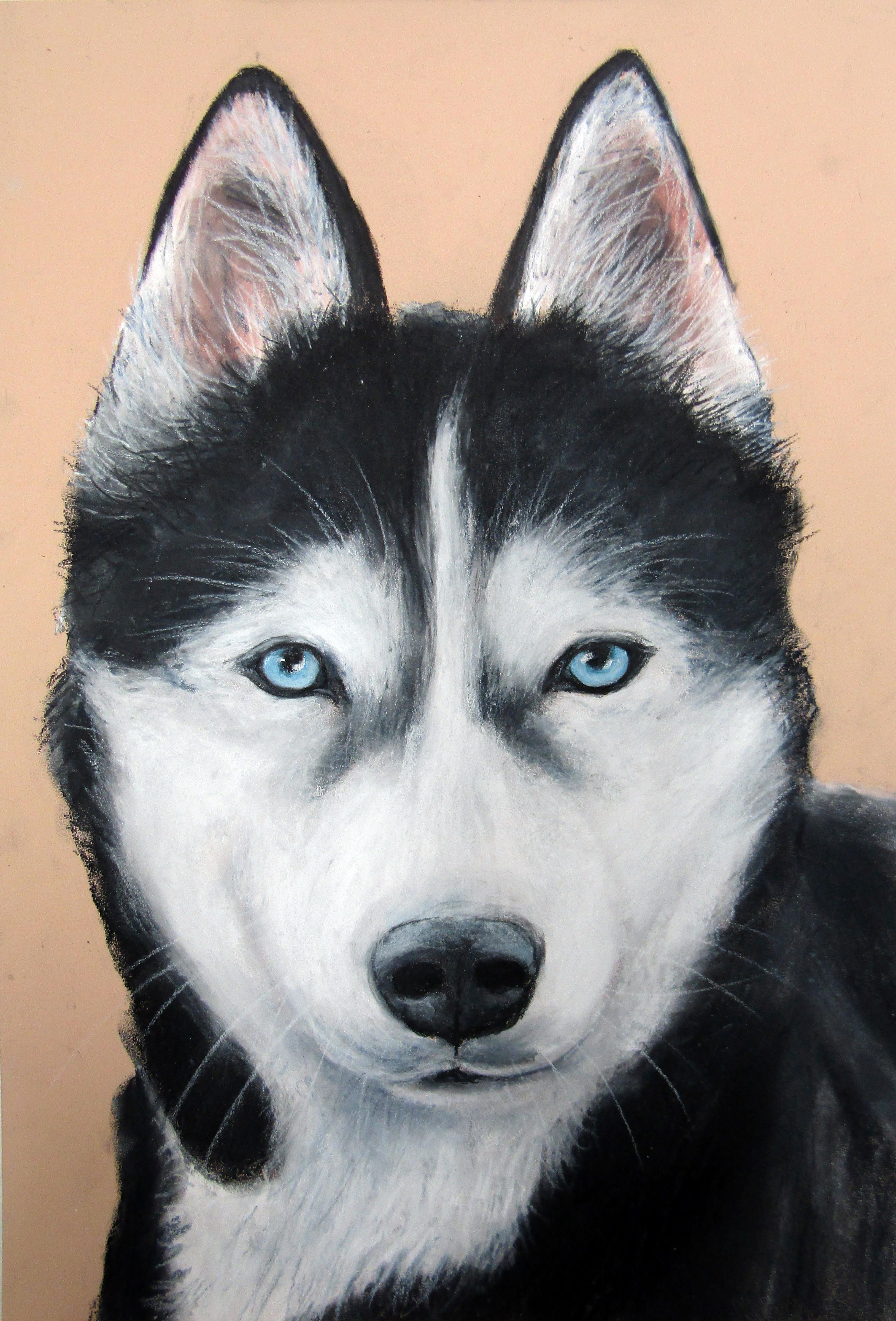 Husky A3