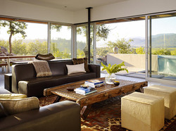 Shelley Cameron : interior designer
