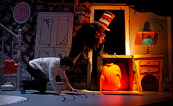 Cat in the Hat 1610.jpg