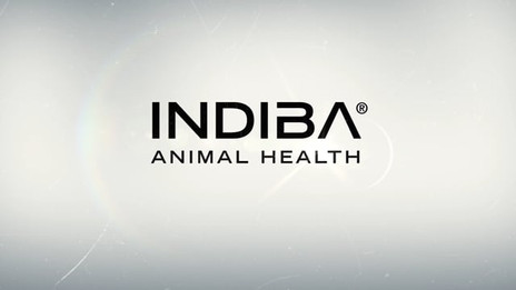 2019 - Indiba Animal Health - Indiba