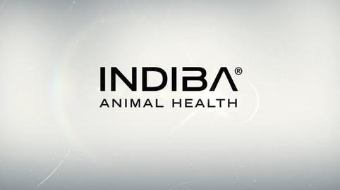 2019 - Indiba Animal Health - Indiba