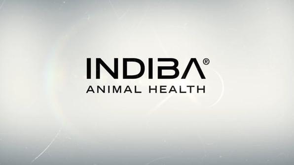 2019 - Indiba Animal Health - Promotional Video