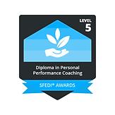 SFEDI Award badge.png