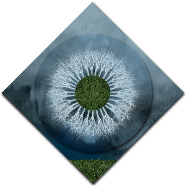 Silver Field Mandala (diamond rotation)