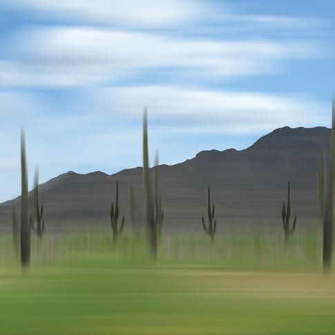 Arizona 04-20 2010 2:42 PM