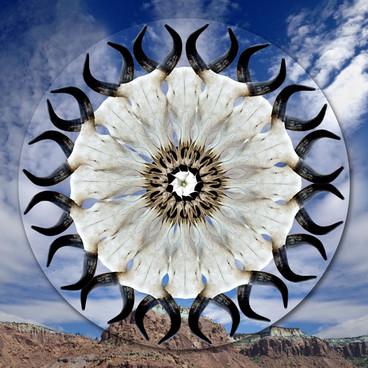 Determination Mandala/Southwest
