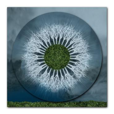 Silver Field Mandala