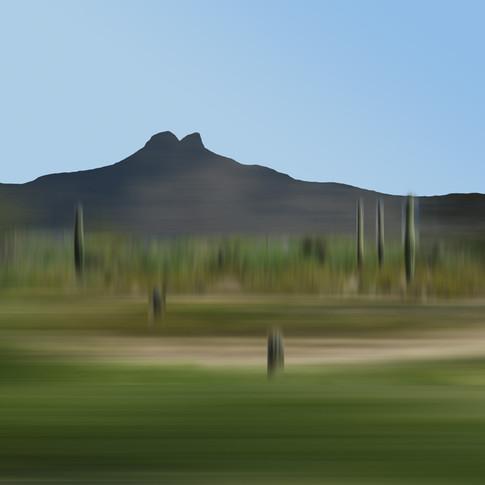 Arizona 04-20 2010 2:46 PM