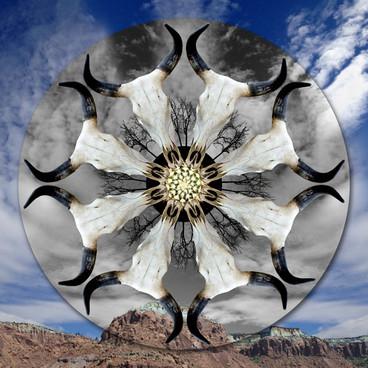 Prosperity Mandala/Southwest
