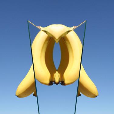 Reflecting Bananas, One
