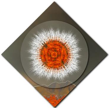 Safeguarding Poppy Mandala 1 (diamond rotation)