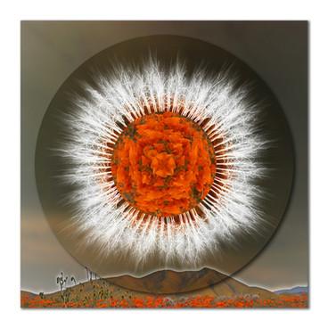 Safeguarding Poppies Mandala 1