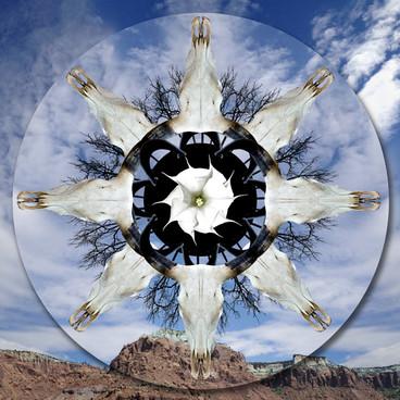 Sacred Realm, 1 Mandala/Southwest