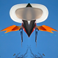 Volare Pineti