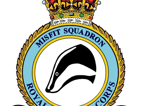 An introduction to the Misfit Squadron series