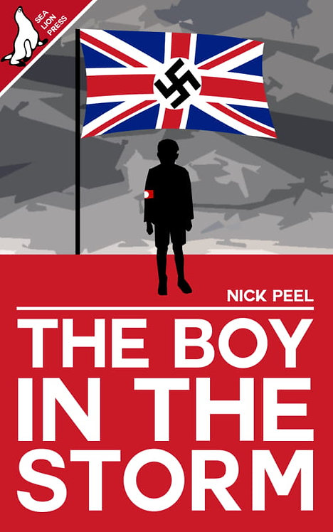 THE BOY IN THE STORM