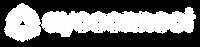Ayoconnect Logo Horizontal - White.png