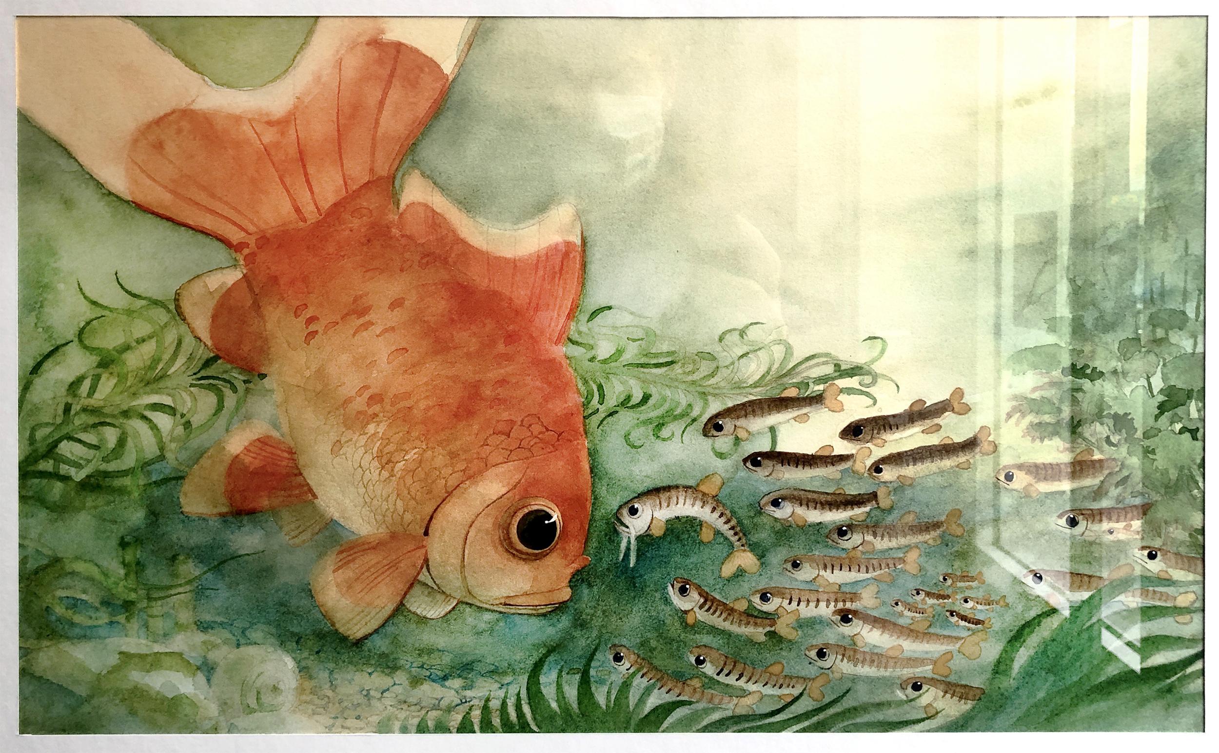 """album """" Jérôme le poisson rouge """""""