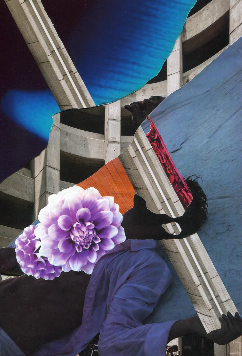TYPO-COLLA-Z : Collage arts