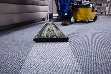 carpet-cleaning-knoxville.jpg