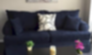Living room couch in a DC condo