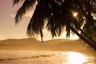 beach-1834648_1920.jpg
