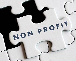 non-profit puzzle piece