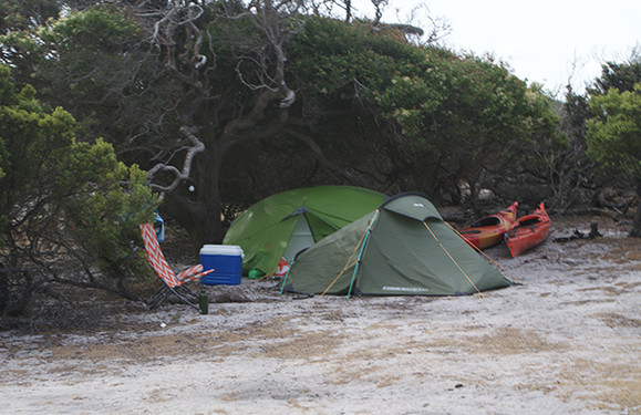 Top Camp Camping