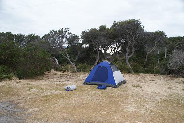 Musselroe Bay Camping