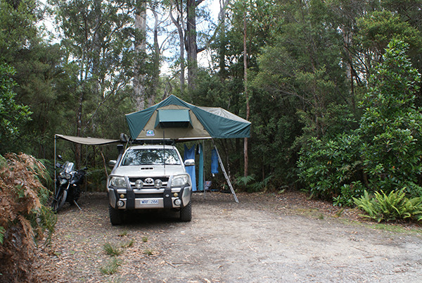 Tahune Forest Camping