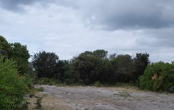 Dianas Basin Camping