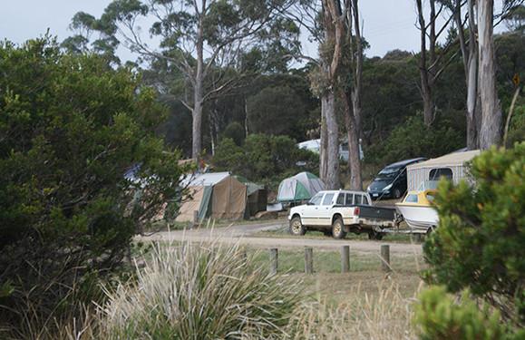 Mayfield Bay Camping