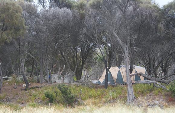 Cosy Corner North Camping