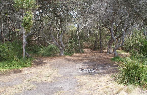 Paddys Island Camping