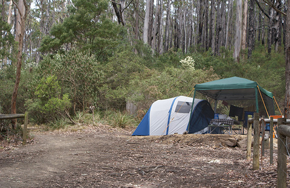 Fortescue Bay Camping