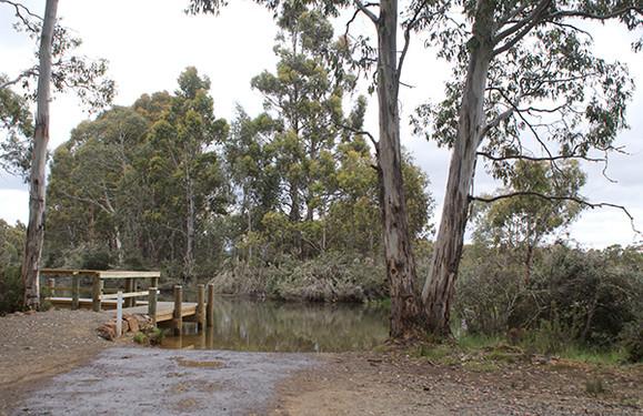 Penstock Lagoon Camping