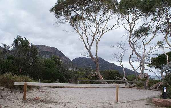 Richardsons Beach Camping