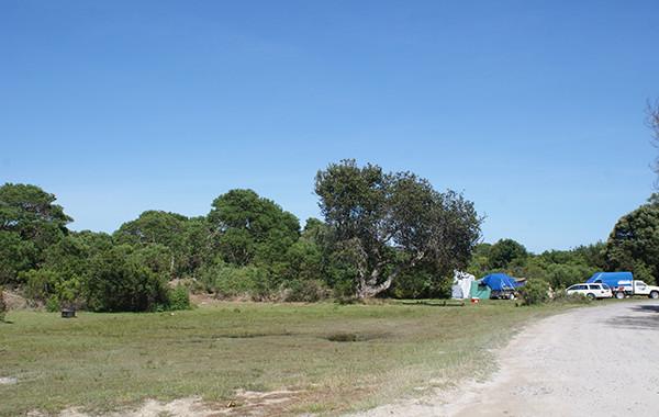 Macquarie Heads Camping