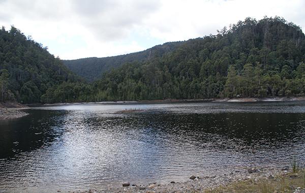 Lake Macintosh Camping