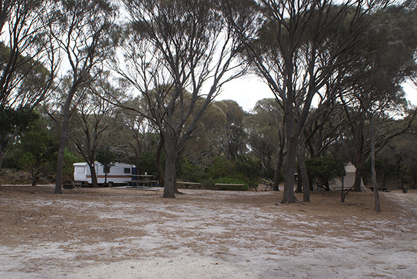 Stumpys Bay 1 Camping